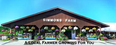 Simmons Farm Anniversary Shoot | Lauren & Tanner | Pittsburgh ...